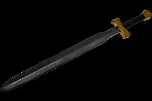 Dette er et billede af Sword Fighter