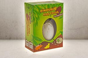 Dinosaur Egg Fossil-0