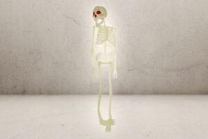 Stort Plastik Skelet - 60cm-0