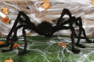Billede af den uhyggelige edderkop